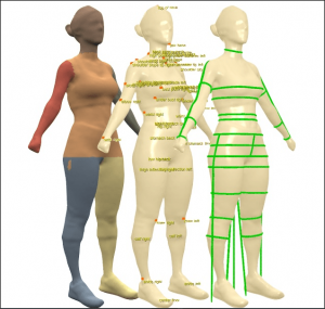 Measurement from body sculpt 3D™ body scanner