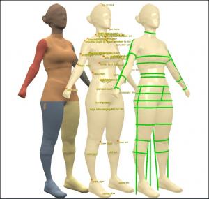 Measurement from body sculpt 3D™ body scanner